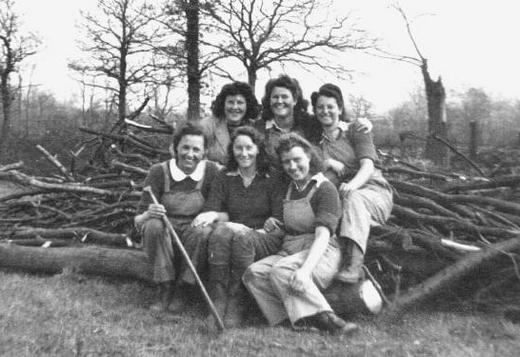 with a group, clearing land prior to being cultivated, Epping Forest 1943